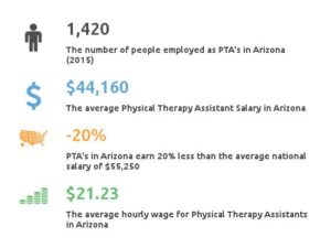 physical therapist assistant schools arizona - partnership for, Human Body