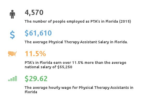 physical therapy assistant schools in florida | pta programs, Human Body