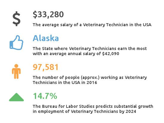 Vet Tech Salary | How much does a Vet Tech make?